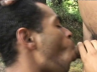 Blowjob (Gay),Gays (Gay),Latin (Gay),Outdoor (Gay) Nasty Bareback Fucking Of Horny Latino Gay