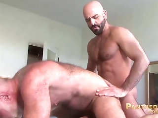 Anal,Cumshot,Bears,Mature,hairy,muscled,gay sleazy Trick Daddies Allen Silver And Adam Russo pound Each Other In bed